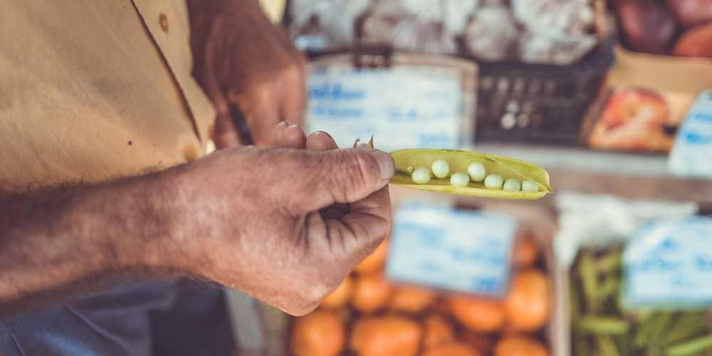 Grocery Startups in India Zaarvis  Image